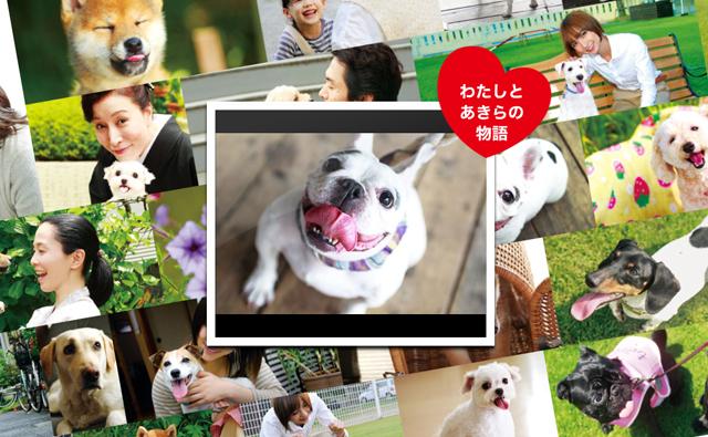 映画『犬とあなたの物語 いぬのえいが』公式サイト